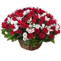 Сборная корзина красные розы и орхидеи R286